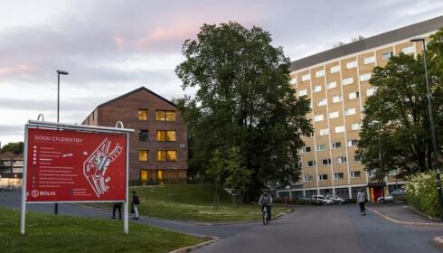 ELDST: Sogn studentby i Oslo ble oppført i forbindelse med OL i 1952. Foto: Jon Olav Nesvold / NTB scanpix