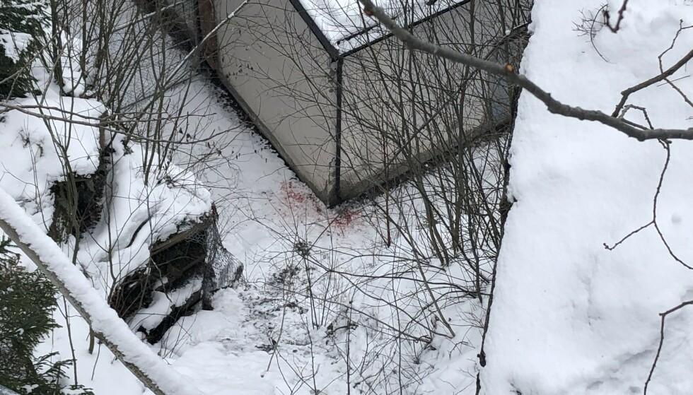 ALVORLIG SKADD: En 18 år gammel mann er alvorlig skadd etter å ha falt mellom 20 og 25 meter ned en skrent i nærheten av Holmenkollen. Foto: Eiliv Frich Flydal