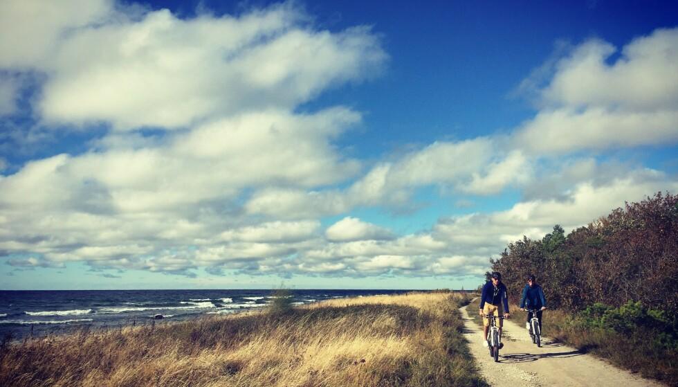 MÅ OPPLEVES: Det gotlandske landskapet er helt unikt. Med sykkel får du virkelig kjent på nærhet til naturen og kysten. Foto: Gotland Active Store