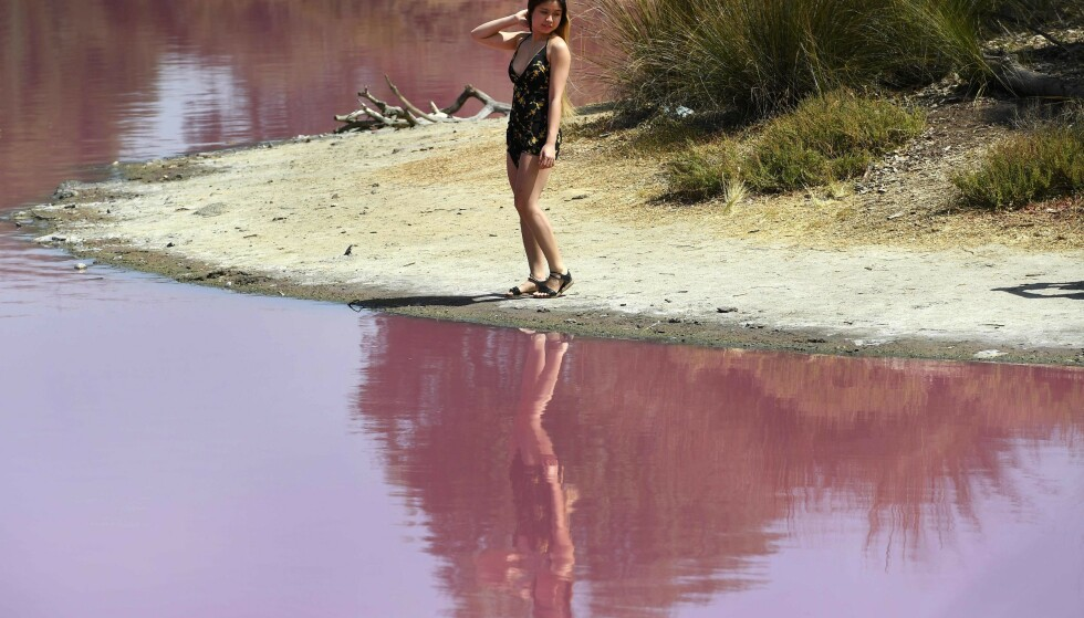 SVØMMETUR? Parken advarer mot å gå for nærme sjøen på grunn av det høye saltinnholdet. Det er ikke farlig å bade, men det anbefales ikke. Foto: NTB Scanpix