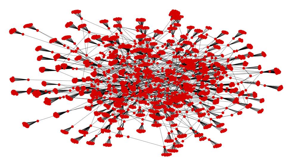 LINKET SAMMEN: Et graf-bilde som 8000 av domenene i samlingen, altså 10% av nettverket. Hver røde prikk er et piratnettsted. Strekene er lenker mellom de. Grafikk: Tor-Henning Ueland