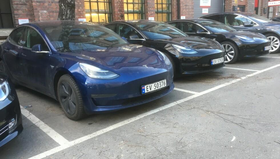 KNUSER ALLE REKORDER: Det er i mars blitt registrert over 5100 eksemplarer av Tesla Model 3 i Norge. Bildet viser nylig registrerte Model 3-biler utenfor forhandleren på Skøyen i Oslo. Foto: Knut Moberg