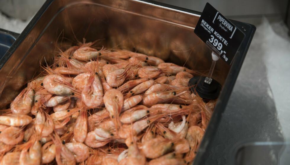 REKTIG SÅ DYRT: Reker i fiskedisken i Pipervika Seafood på Rådhuskaia. I år tyder mye på at prisene bli presset enda høyere enn i fjor. Foto: Berit Roald / NTB scanpix