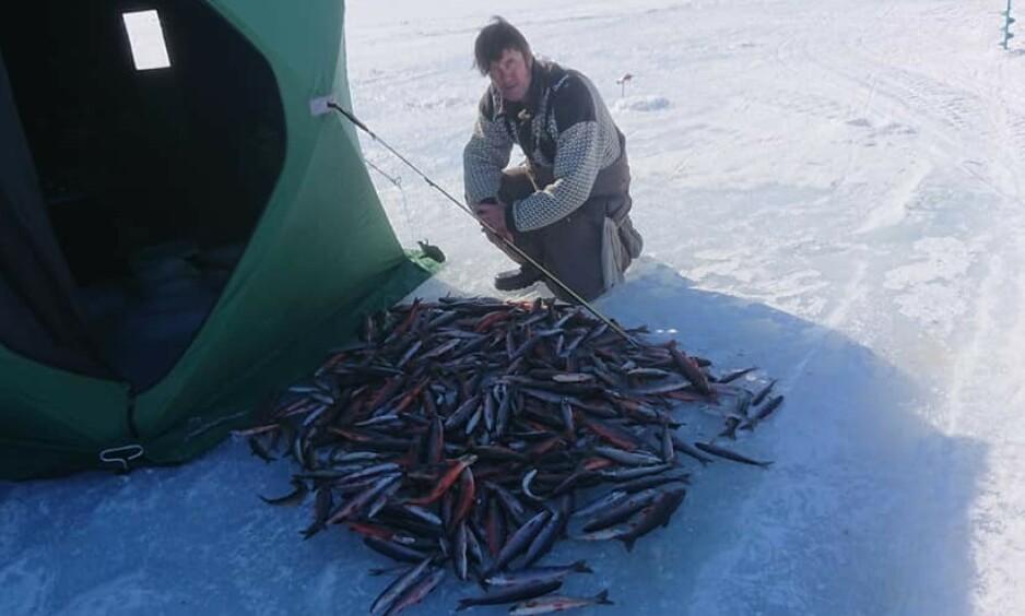 DRØMMEDAG: Bjørn Erik Gyberg hadde det travelt på isen i går. Han dro opp 436 fisk på en dag. Foto: Privat