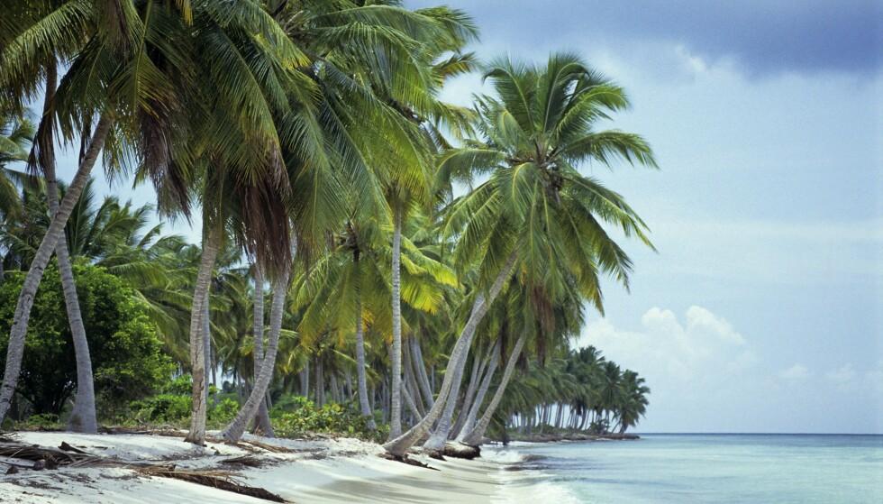 POPULÆR DESTINASJON: Millioner av turister besøker Den dominikanske republikk hvert år. Foto: imageBROKER/REX
