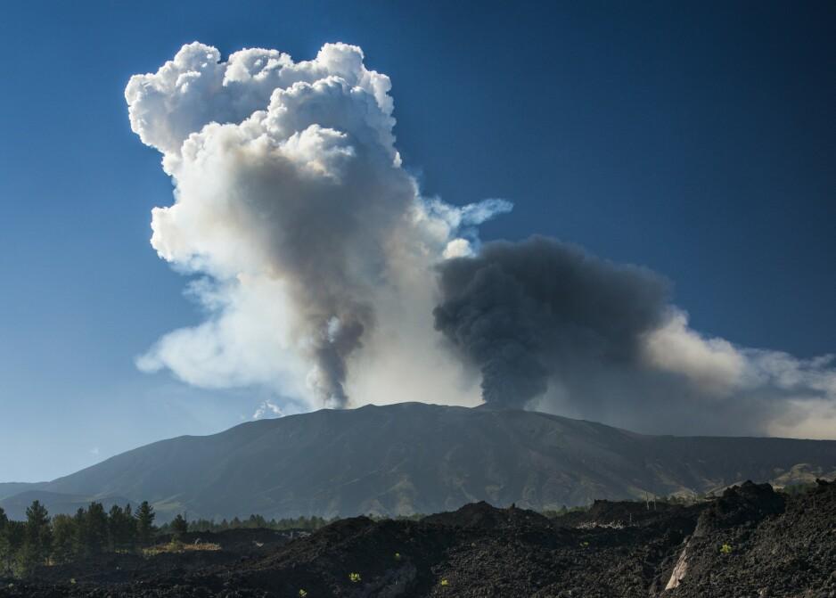 Aktiv vulkan: Etna, som også er kjent som Mongibello lokalt, er en aktiv vulkan på østkysten av Sicilia i Italia. Etna som er øyas kjøligste område og ligger i høyden (opptil 1100 moh.) frambringer varierte og særegne viner med tydelig terroirpreg av topp kvalitet. Foto: Rex Shutterstock / NTB Scanpix