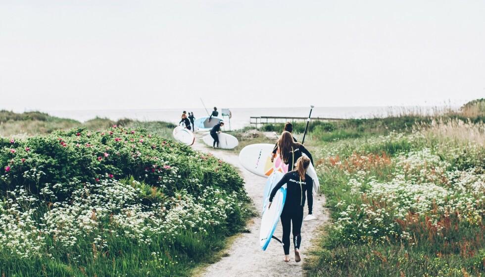 GODE VINDFORHOLD: Halland er et paradis for surfere. Foto: Karin Lagerqvist