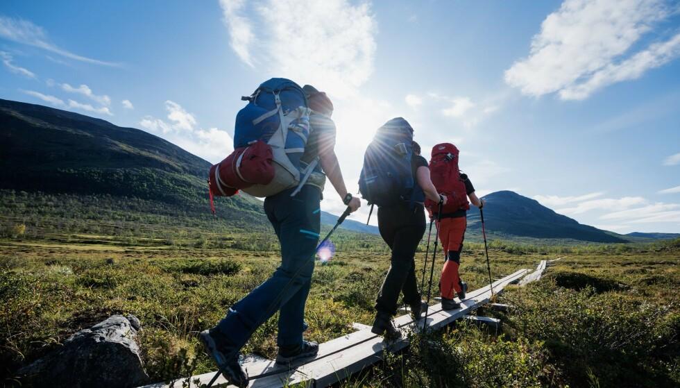 VAKKER NATURVANDRING: Kungsleden er en 400 km lang turløype med variert og spektakulær natur. Foto: Cody Duncan