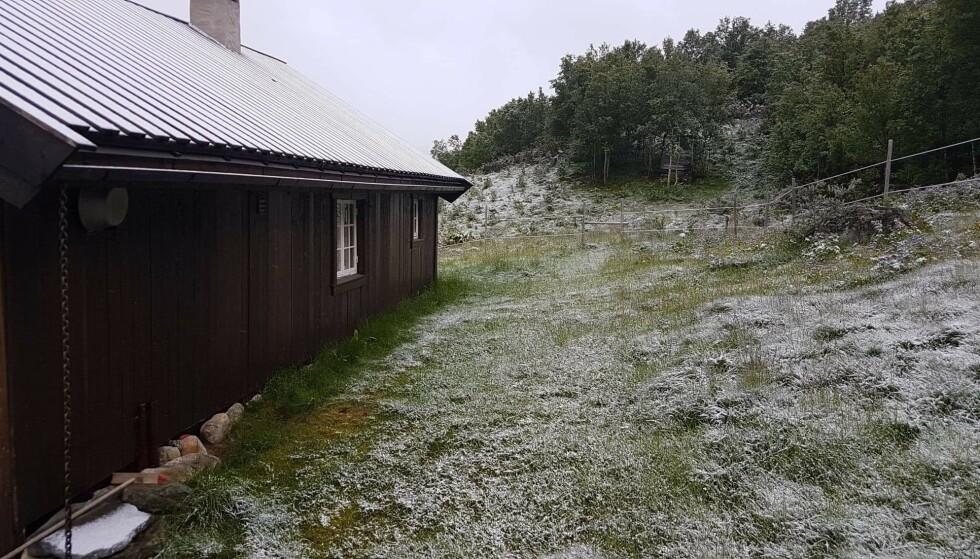 JULIMORGEN: Hilde våknet til snødekt tak - i morges. Foto: Hilde Hatlo