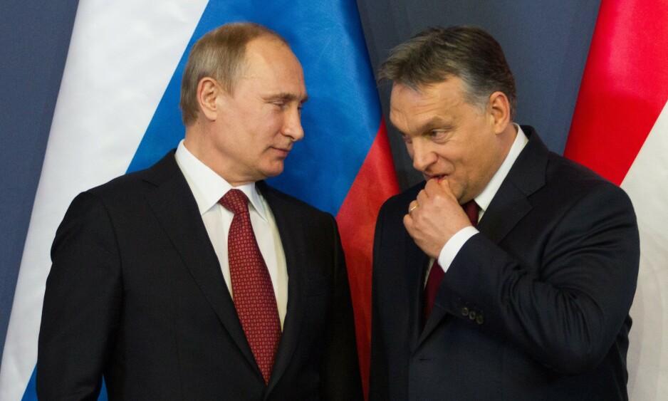 MYE Å SNAKKE OM: Russlands president Vladimir Putin (til venstre) og ungarns statsminister Viktor Orban. Foto: Puzzlepix/REX/NTB scanpix