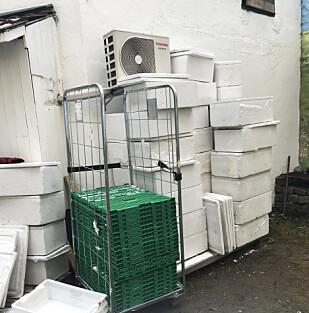 OPPBEVARING: Utenfor lokalene til en av virksomhetene fant Mattilsynet denne uhygieniske oppbevaringen av cateringkasser. Foto: Mattilsynet