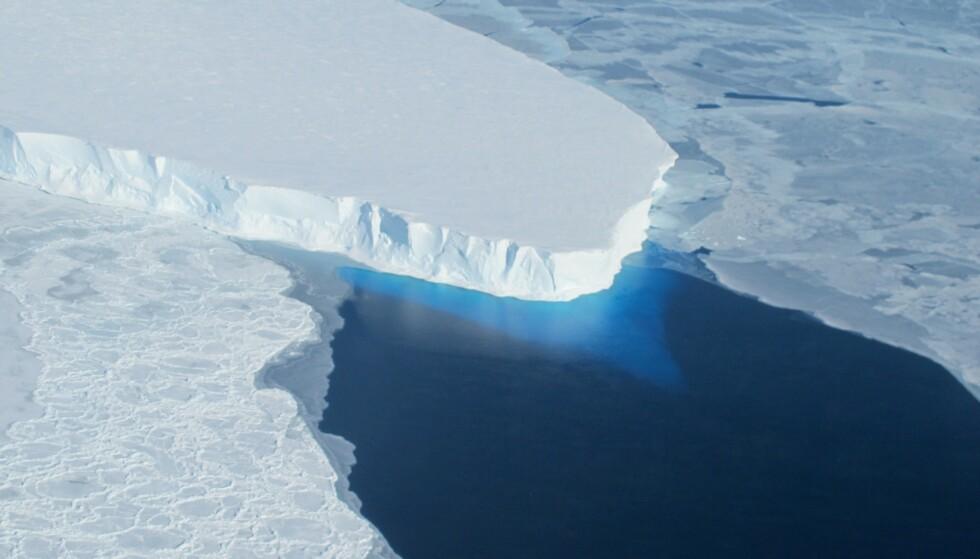 HAVSTIGNING: Thwaites-breen smelter langt fortere enn forskere har trodd, fordi sjøvannet i Amunsenhavet trenger inn fra undersiden. Dette bildet er fra 2014. Foto: AFP / Nasa / NTB Scanpix