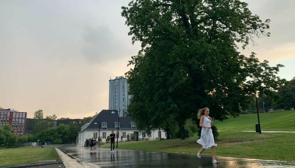 UVÆR: I 20.30-tida ble OSlo rammet av et kraftiog uvær. Trær falt overende, ifølge politiet. Foto: Emilie Rydning / Dagbladet