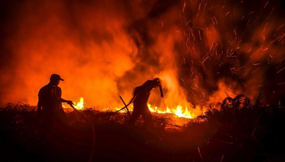 ALARMIST: Det går stadig kortere tid mellom dødelige skogbranner og livstruende hetebølger, skriver David Wallace-Wells i «Den ubeboelige planeten». Her fra en skogbrann i Pekanbaru, Indonesia, 23. juli i år. Foto: NTB SCANPIX