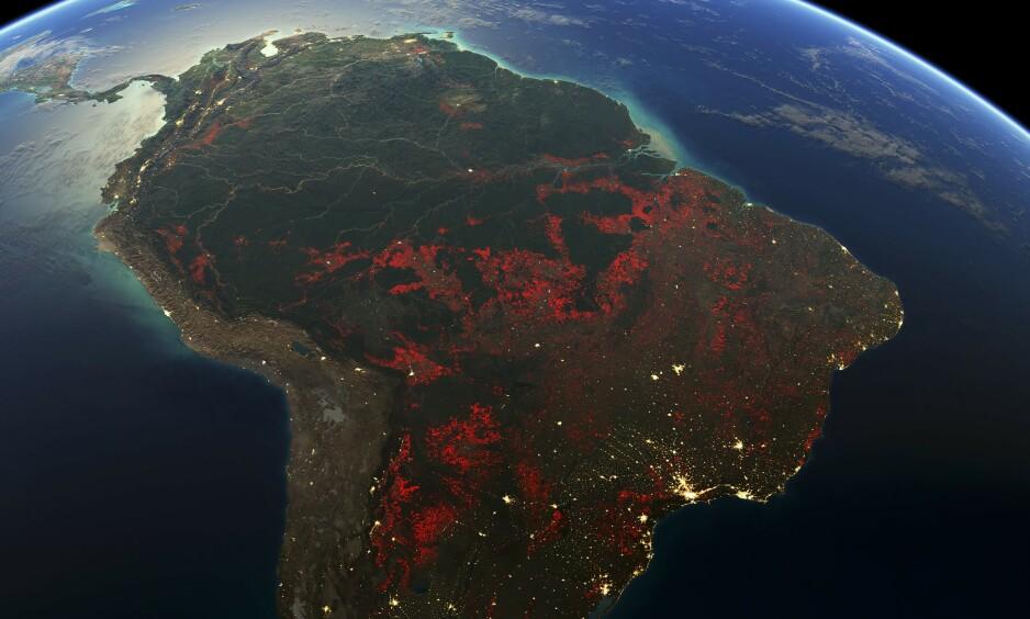 FULL STOPP: Dette sammensatte bildet viser omfattende avskoging (røde felt) og urbanisering (gule felt) i Sør-Amerika i perioden 2000-2012. Dersom Brasils president får det som han vil, blir det full stopp i spredning i slike bilder fra Amazonas - som han ikke selv har godkjent. Foto: Science Photo Library / NTB Scanpix