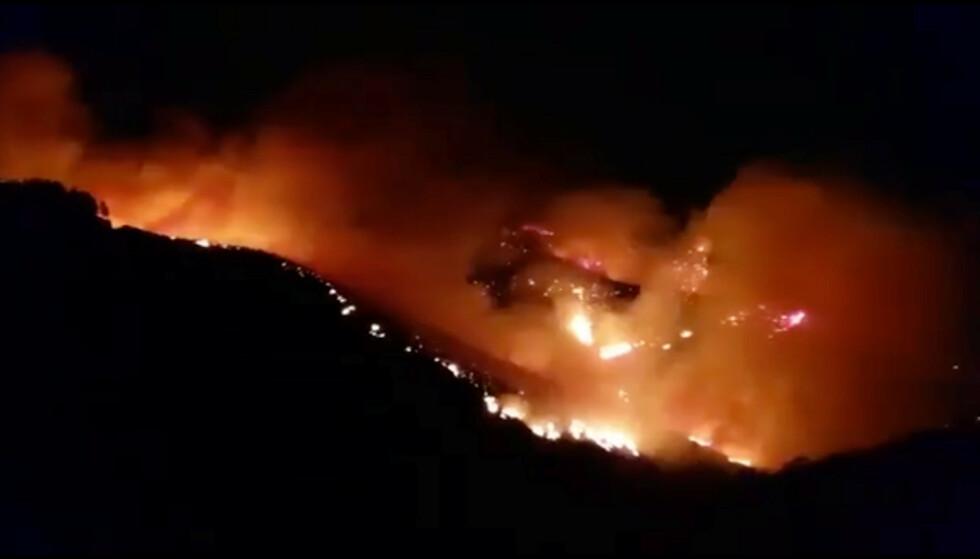 SKOGBRANN: En stor skogbrann har brutt ut på Gran Canaria. Foto: Reuters / NTB Scanpix