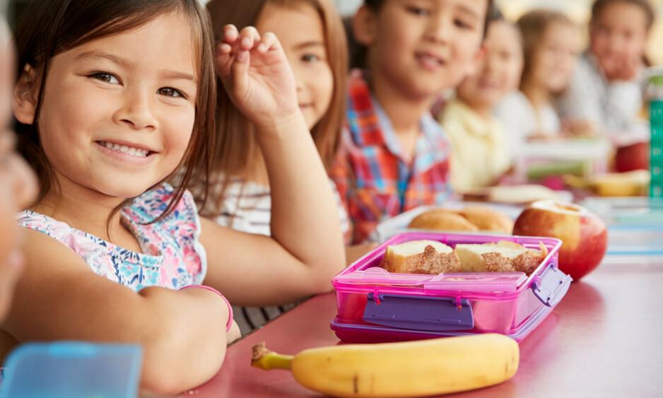 GOD MAT: Min erfaring er at de fleste foreldre er svært opptatt av matpakkene de sender med barna sine, selv om de opplever det som et stresselement i hverdagen, skriver innsenderen. Foto: Shutterstock / NTB Scanpix