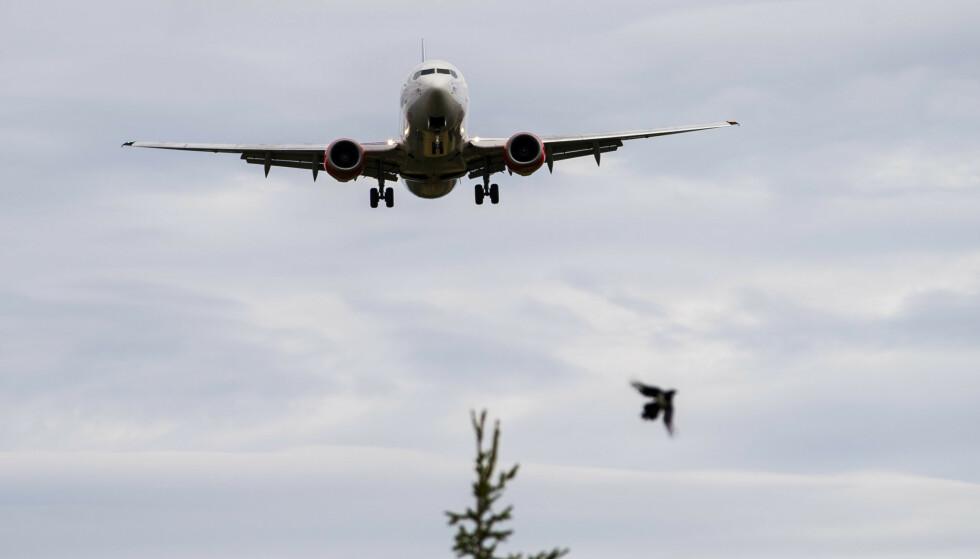 VELGER FLY: Stortingsrepresentantene flyr til sammen 18 innenlandreiser hver eneste dag. Foto: Håkon Mosvold Larsen / NTB scanpix
