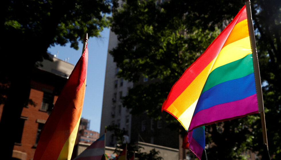 FILE PHOTO: A rainbow flag, commonly known as the gay pride flag or LGBT pride flag, blows in the wind inside Christopher Park outside the Stonewall Inn in New York, U.S., June 27, 2019.  REUTERS/Shannon Stapleton/File Photo
