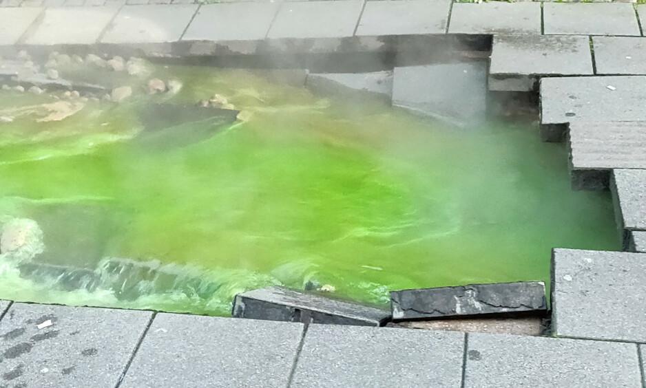 FOSSET UT: Grønt vann fosset ut i gata i sentrum av Borås mandag morgen. Foto: Patrik Dahlgren