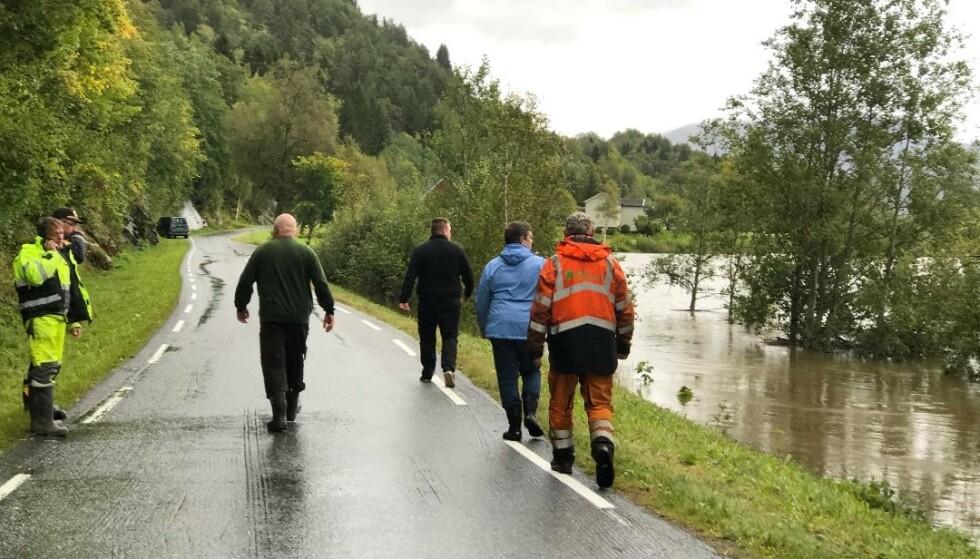 <strong>OVERSVØMT:</strong> Sauenes beiteområde er oversvømt på grunn av flommen. Foto: Tor Helge Solli / Tidens Krav