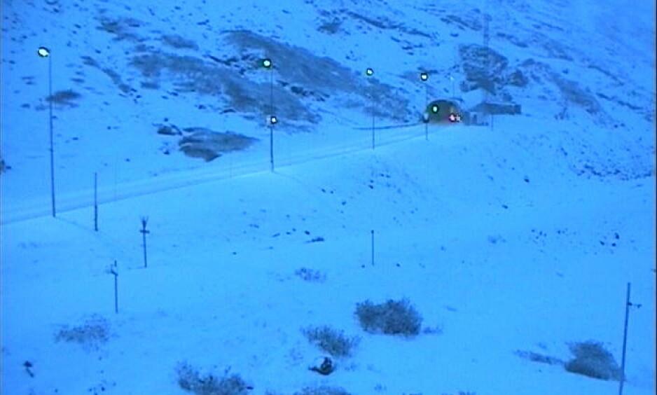 Haukelifjell: Slik ser det ut på Haukelifjell tirsdag morgen. Foto: Statens vegvesen
