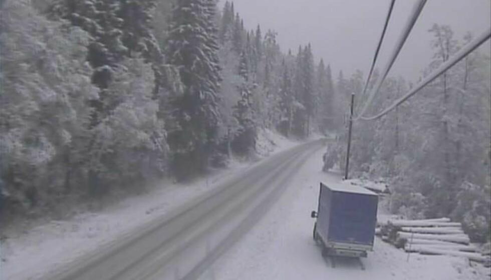 AMBJØRNDALEN: Slik ser det ut på E134 ved Ambjørndalen. Foto: Statens vegvesen