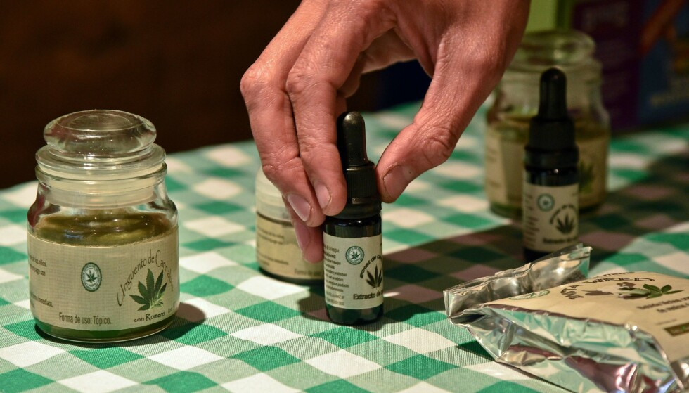 MEDISINSK MARIJUANA: Evidensen for cannabis i smertebehandling er begrenset. Nyere studier tyder på at effektene er små, og det er uklart om effektene oppveier de negative bivirkningene, skriver innsenderen. Foto: AFP / NTB Scanpix
