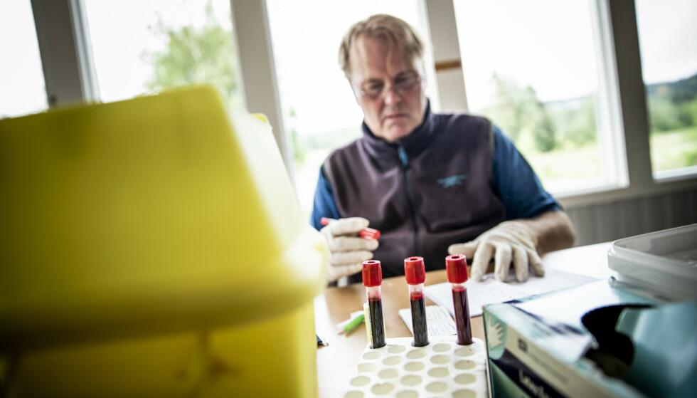 AMATØRERS BLOD: - Til å være amatører, er noen av disse verdiene veldig høye, sier legespesialist Bård I. Freberg om fluormålingene. Foto: Christian Roth Christensen