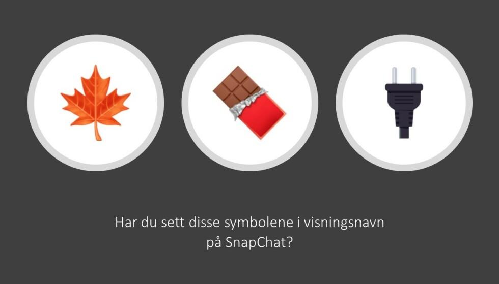 EMOJIS: Salgsgruppene bruker ofte symboler, såkalte emojis, i brukernavnet for å indikere at de er tilgjengelige og for å vise hva slags stoff de har inne. Foto: Politiet