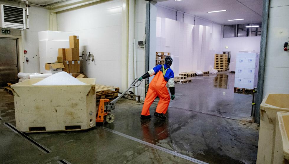 AVISER LOVBRUDD: Også det litauiske bemanningsbyrået, Skodita, mener at Arbeidstilsynet har tatt feil. Foto: Nina Hansen/Dagbladet