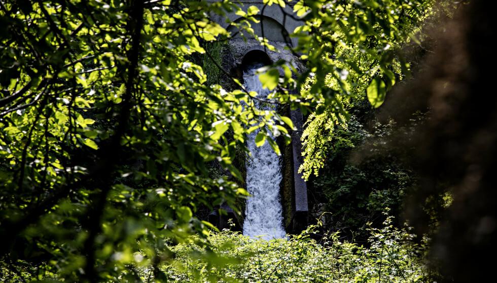 RØR: Dette røret går ut fra Miteni-fabrikken, og rett ned i elva som løper bak fabrikklokalet. Foto: Nina Hansen