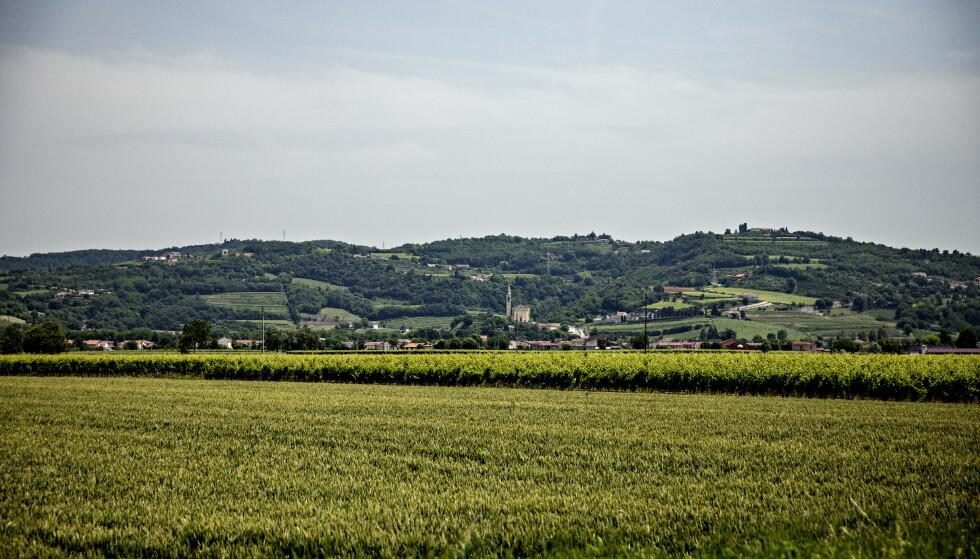 VAKKERT: Regionen som nå er kraftig forurenset er vakker og rik på jordbruksarealer. Men jordbruksproduktene - som vinen - er ofte forurenset av PFAS-kjemikaler. Foto: Nina Hansen