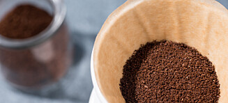 Dyster fremtid for verdens mest populære kaffe