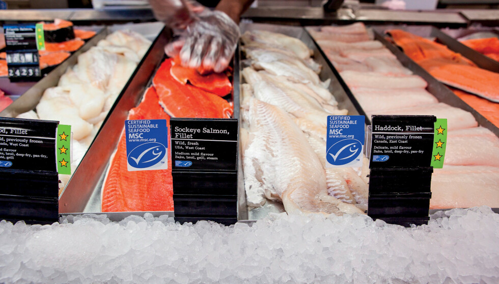 MILJØ-MERKET: Norsk sjømat er blitt produsert under ulovlige arbeidsforhold, og er blitt solgt som «bærekraftig, miljømerket sjømat». Foto: MSC