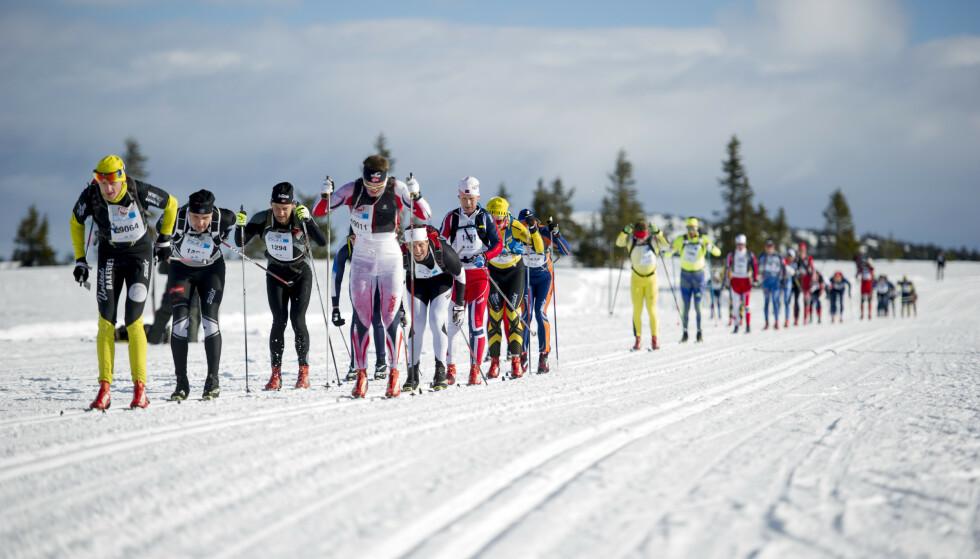 Også blant amatører: Titusenvis av mosjonsløpere og konkurranseløpere i Birkebeinerrennet har vært noen av de ivrigste fluorforbrukerne opp igjennom åra. Foto: Jon Olav Nesvold / NTB scanpix.