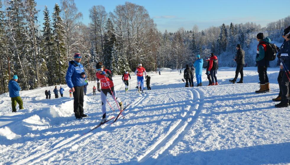 Nye fluorstoffer: Rapporten har også avdekket nye, ubeskrevne fluorstoffer i snøen. Her fra et tidligere renn i skianlegget hvor underskelsen ble gjennomført. Foto: Martin Schlabach, NILU.