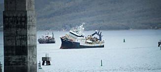 Denne båten leverte «bærekraftige reker» til norsk mottak