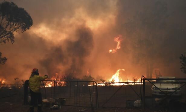 SKOGBRANNER: Torsdag kveld døde de to frivillige brannmennene da de var på vei for å bekjempe en brann nær byen Buxton. Foto: Dean Lewins / AAP via AP / NTB scanpix