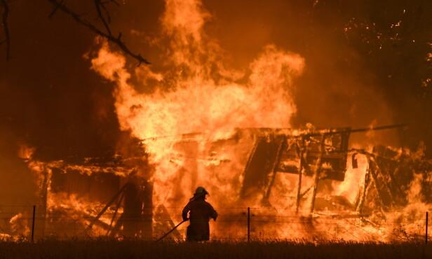 KJEMPER: Tallrike brannfolk kjemper mot tallrike branner i Australia. Foto: Dan Himbrechts / EPA / NTB Scanpix