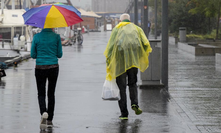 MILDVÆR: Det milde vinterværet vil strekke seg fram til slutten av mars, ifølge klimaforsker Erik Kolstad. Foto: Vidar Ruud / NTB Scanpix