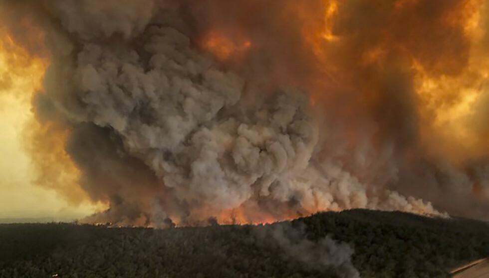 SKOGBRANNER: Skogbrannene herjer i dette flyfotoet fra Australia. Tusenvis av turister og fastboende er rammet og har flyktet fra områdene. Militæret er satt inn for å bistå i arbeidet. Foto: NTB Scanpix / AP