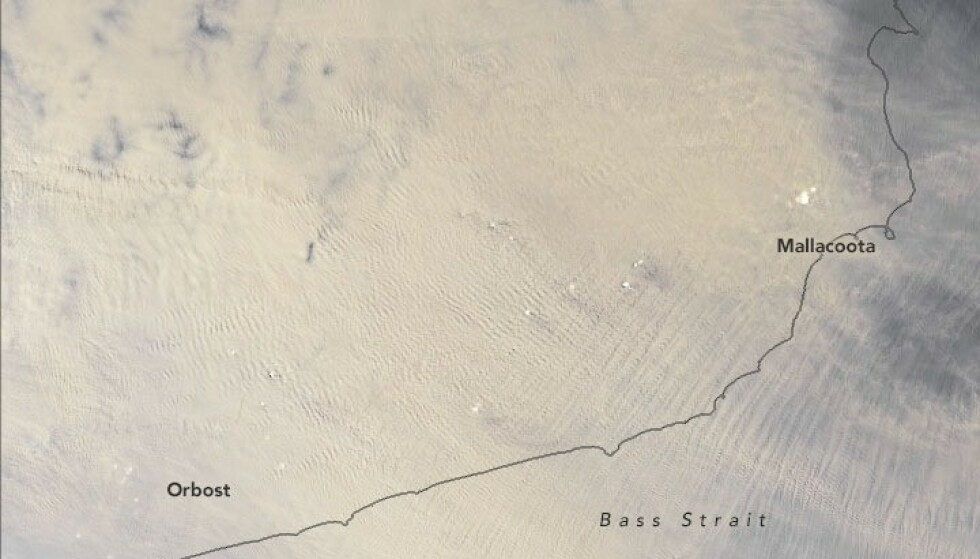 RØYKDEKKET: Nye bilder fra NASA viser at Australia ligger under et teppe av røyk. Foto: NASA