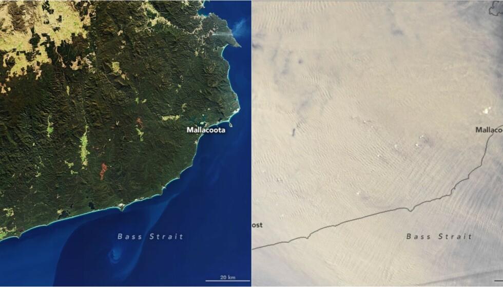 RØYKLAGT: Bildet viser forskjellen fra i sommer til nyttår. Foto: NASA