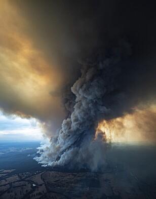 HERJER: Dette bildet viser brannen i Gippsland i delstaten Victoria torsdag. Foto: DELWP Gippsland via AP