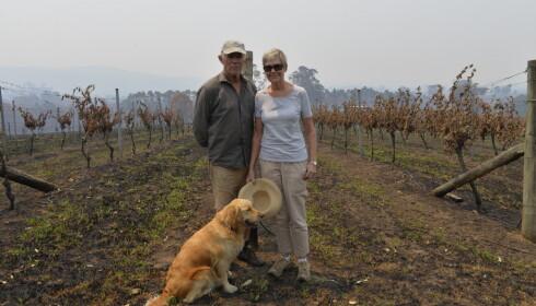 ØMTÅLIG TEMA: Gary Potts, Frances Perkins og hunden Rosie. Pensjonistparet mistet hele vingården i brannen, bare huset sto igjen. Selv i denne desperate situasjonen er klimaendringer et ømtålig tema. Foto: Geir Ramnefjell