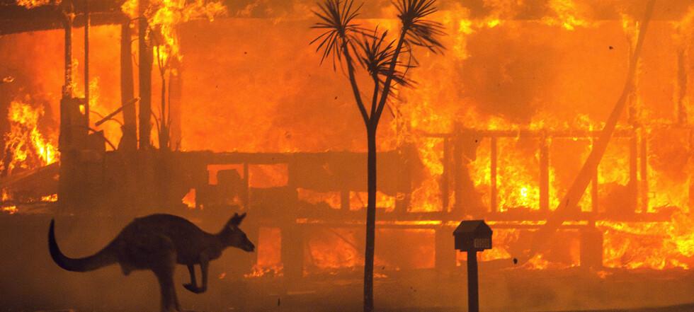 «Vi trenger to, tre slike katastrofer»