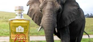Lager gin med elefantbæsj