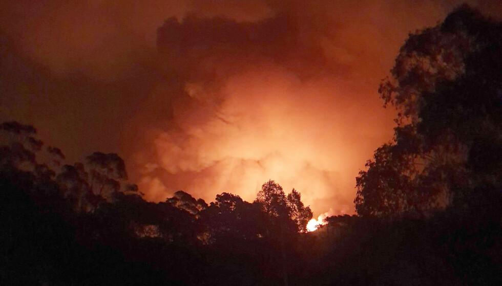 KATASTROFALT: De australske skogbrannene har hatt katastrofale konsekvenser. Her nærmer flammene seg landsbyen Nerrigundah i desember i fjor, der en 71 år gammel mann ble drept. Foto: Siobhan Threlfall / AP Photo / NTB scanpix