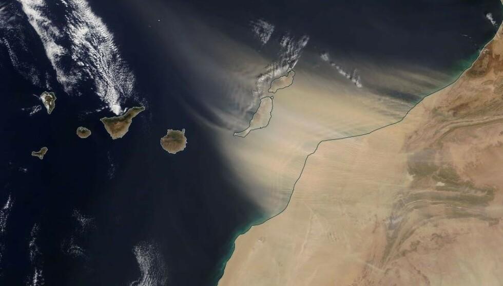 CALIMA: Sand fra Sahara blåser inn over Kanariøyene. Foto: NASA